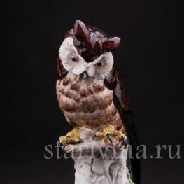 Фигурка птицы из фарфора Ушастая сова, Carl Thieme, Германия, с 1901 г.